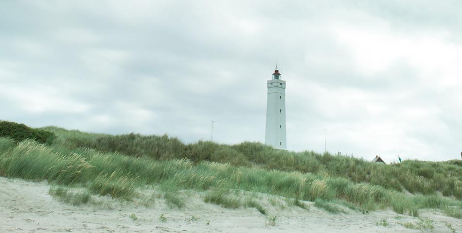 Den naturlige oplevelse – at se verden i et sandkorn