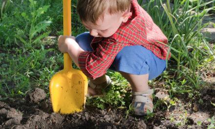 Graver vi huller, men glemmer at dække dem til igen?